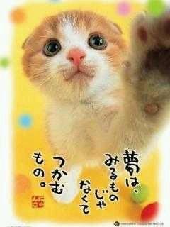 NoName_0026.jpg